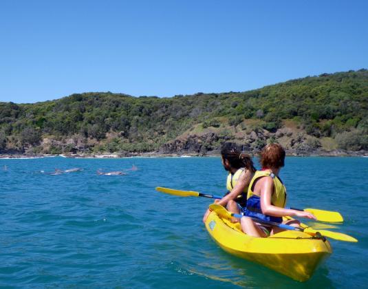 Turtle Kayak Tour