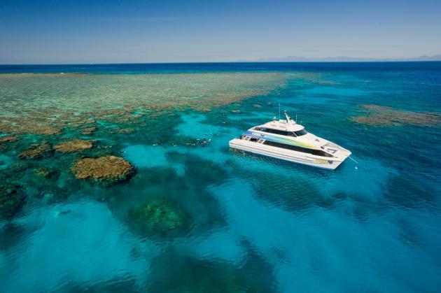 1 Day Reef Snorkel Trip
