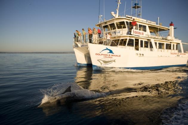 Jervis Bay - South Coast with Dolphin Cruise