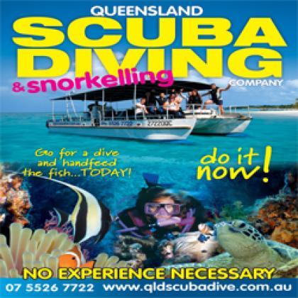 Queensland Scuba Diving Company: Diving Options