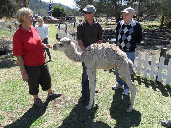 Lockyer Country