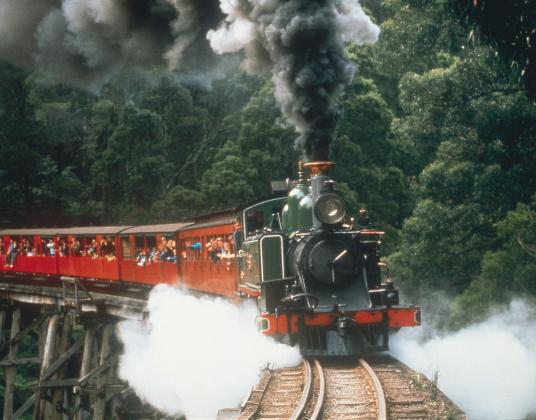 Half Day Puffing Billy