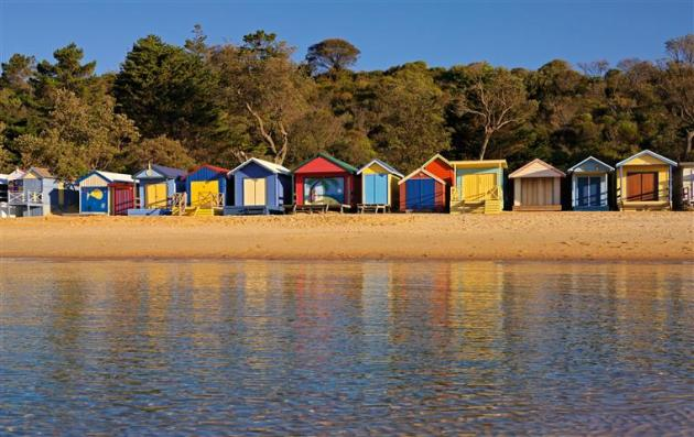 1 Day Mornington Peninsula Ultimate Tour