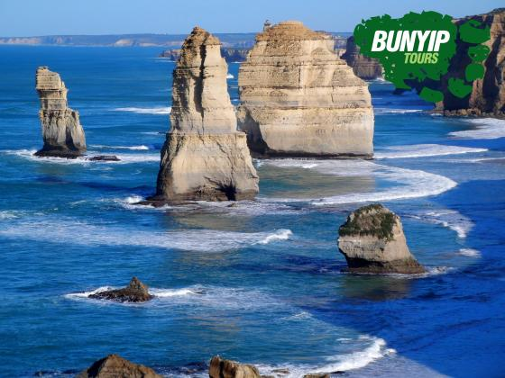 2 Day Great Ocean Road, Mornington Peninsula & Penguin Parade Tour