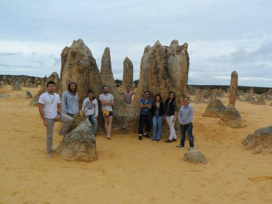 1 Day Pinnacles and Sand Boarding Tour