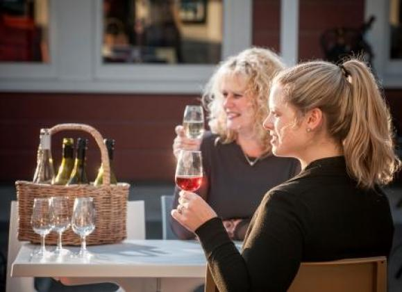 Hammonds Wellington Tours: 1 day Martinborough Gourmet Wine Tour