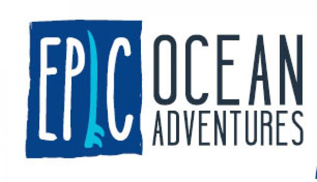 Epic Ocean Adventures: 3 Day Learn to Surf Package Rainbow beach