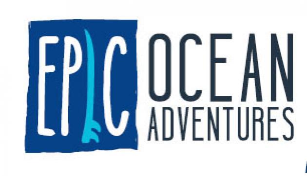 Epic Ocean Adventures: Sand Board/Sand Sled hire Rainbow Beach 2hrs