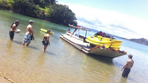 Bay of Island - Cruise & Kayak