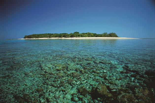 Great Barrier Reef 3-Day Tour