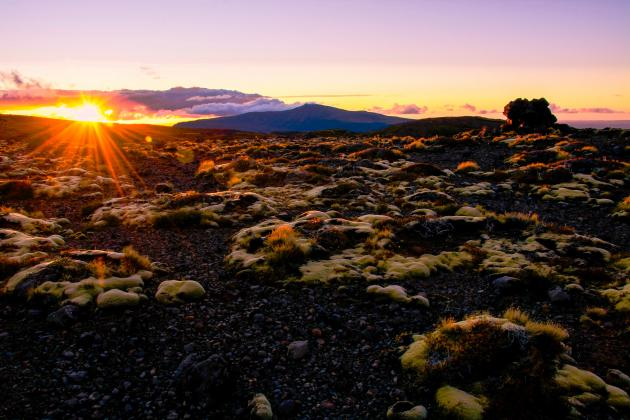 Adrift Tongariro - 2 Hour Sunset Guided Walk