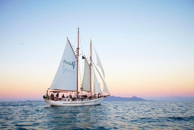 Providence Sailing: Daily Sunset Sail