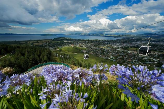 Skyline Rotorua Gondola, Luge, Skyswing & Photo Combo