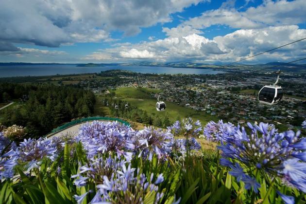Skyline Rotorua Gondola, Luge, Skyswing & Photo Combo