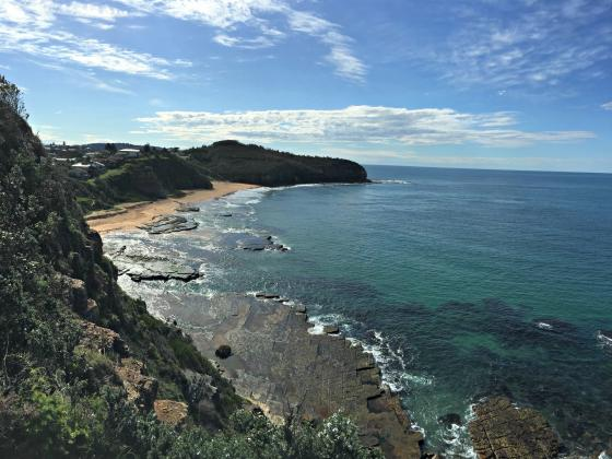 Go Beyond Tours: Sydney's Northern Beaches & National Parks Tour