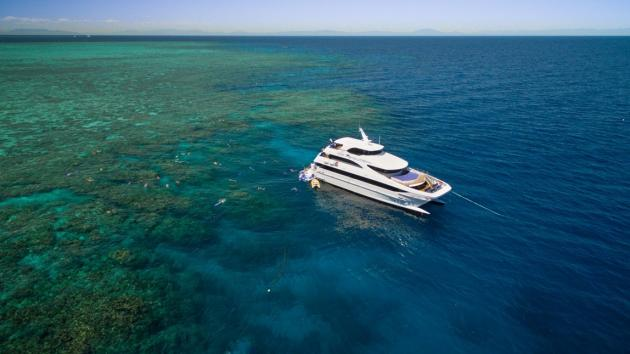 Down Under Cruise and Dive: Get High Package