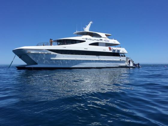 Full Day Cruise with 1 Intro and Free Second Dive