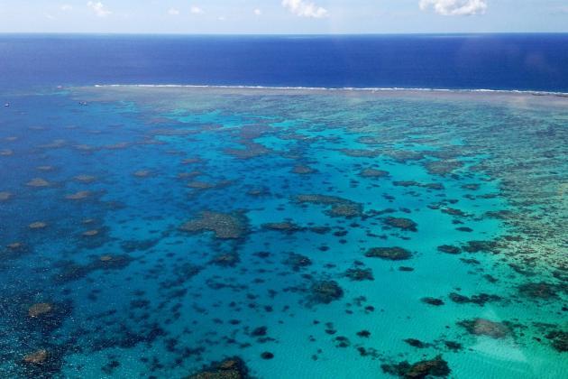 Cairns 'Reef Hopper' 40min Scenic Flight