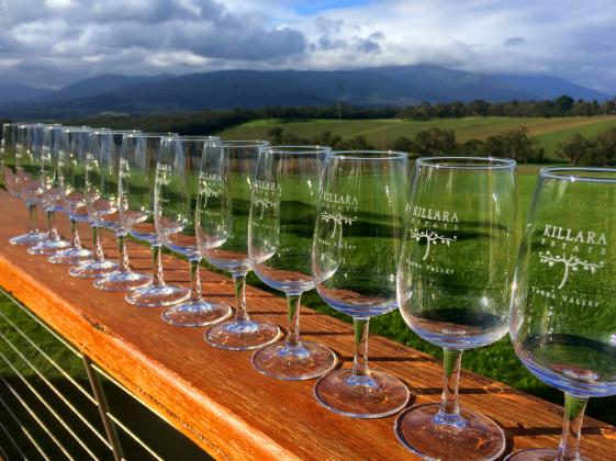 Puffing Billy Steam Train & Yarra Valley Wineries