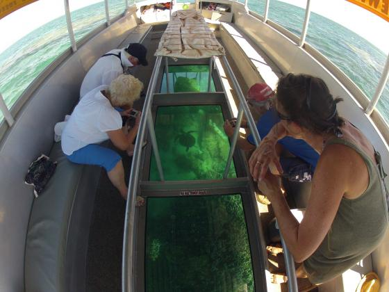 Coral Viewing Fantasy Tour - GLASS BOTTOM BOAT