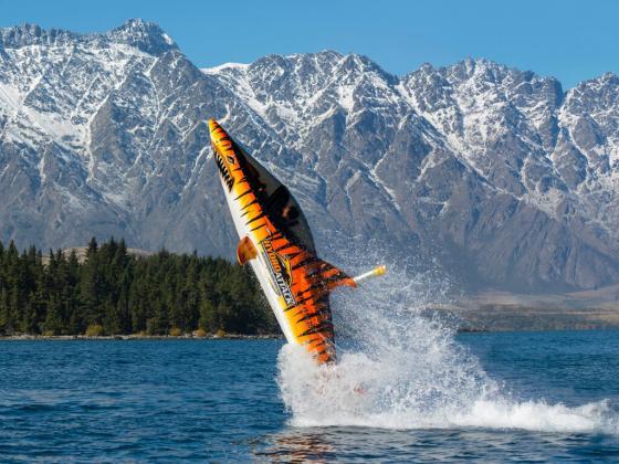 Individual Shark Ride