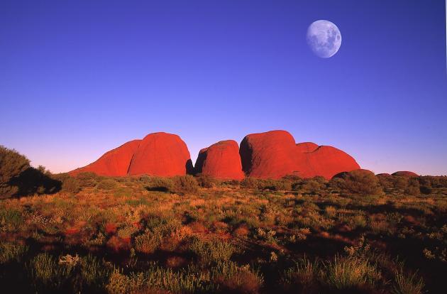 Overnight Uluru Camping Tour - Emu Run Experience