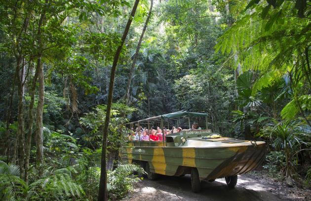 Kuranda Rainforestation