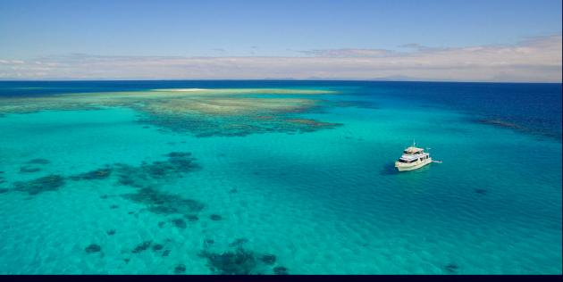 Full Day Outer Great Barrier Reef inc 1 Certified Dive