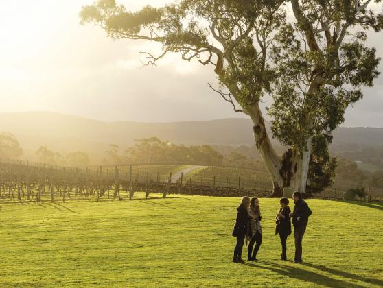 Hahndorf & Adelaide Hills Hop On Hop Off Tour