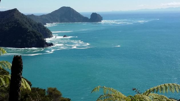 Coromandel Adventures - Coromandel Coastal Walkway