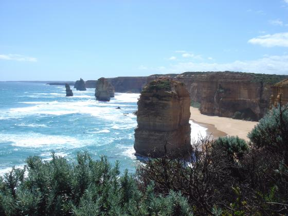 1 day Great Ocean Road Adventure