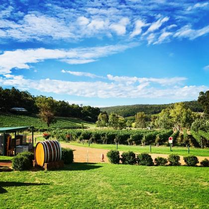 d'Vine Tours - Bickley Valley Full Day Wine Tour