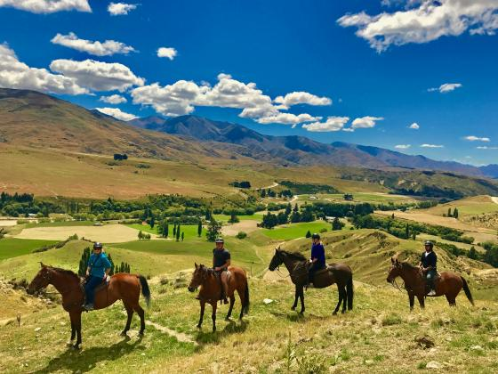 THE CARDRONA High Country Pub Trail Horse Trek 12:30pm (3.5hrs)