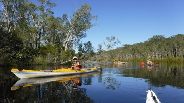 1 Day 'Picnic N Paddle' Self-Guided Noosa Everglades Kayak Adventure