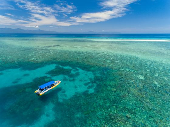 Great Barrier Reef Eco Adventure - Afternoon tour