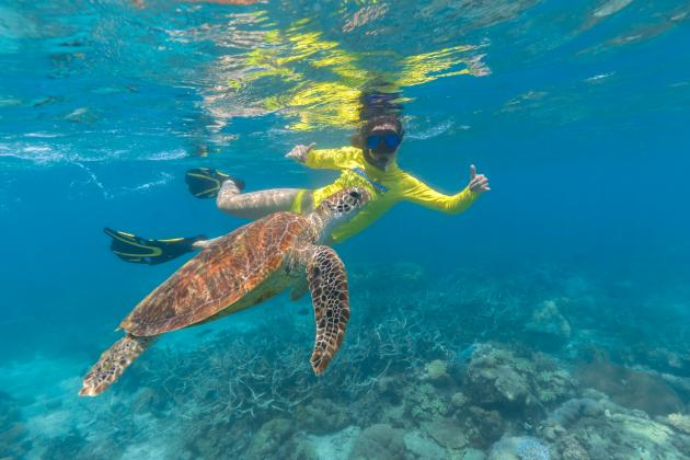 Great Barrier Reef Eco Adventure - Morning Tour