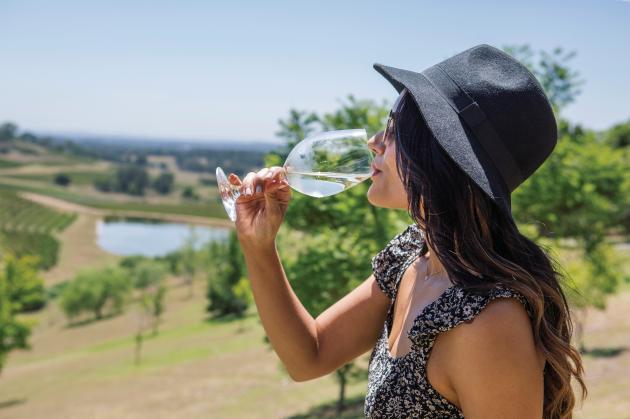 Hunter Valley Scenic Wine & Dine Tour - Sydney
