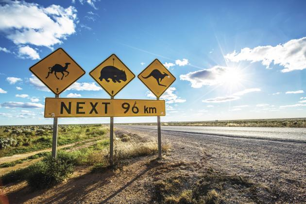 Perth to Adelaide - The Great Australian Wilderness Tour