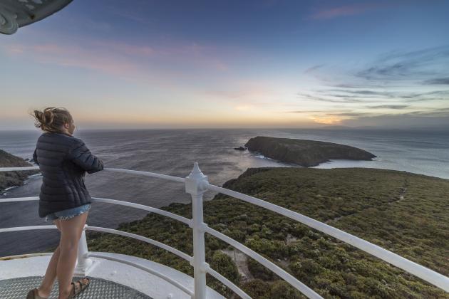 Bruny Island Sightseeing Food & Lighthouse Tour