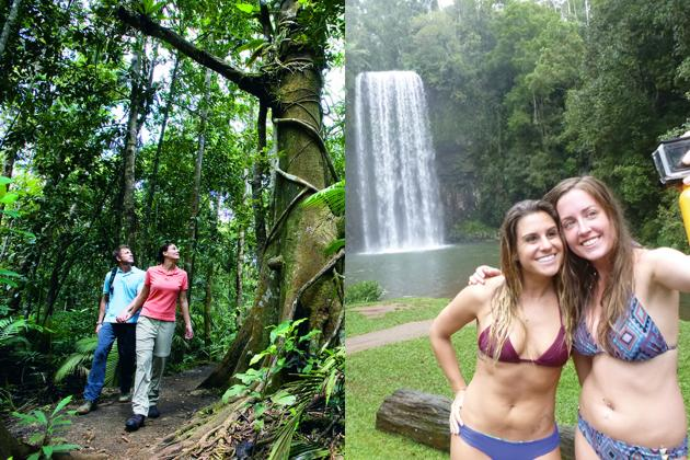 DOUBLE PACK - Active 1 Day Cape Trib tour + Waterfall Wanderers