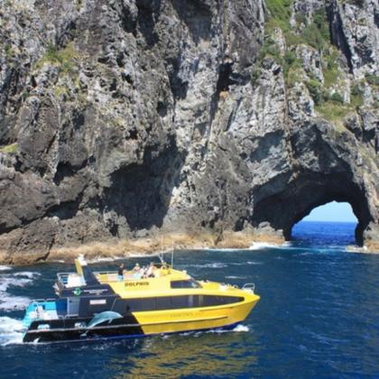 Bay of Islands Explorer Small Group Tour from Auckland