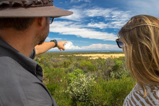 1 Day Pinnacles, Wildlife & Sandboarding Tour
