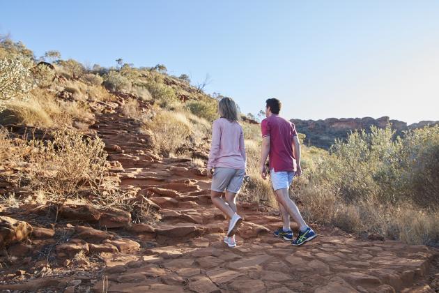 Kings Canyon & Outback Panoramas (returns to Uluru)