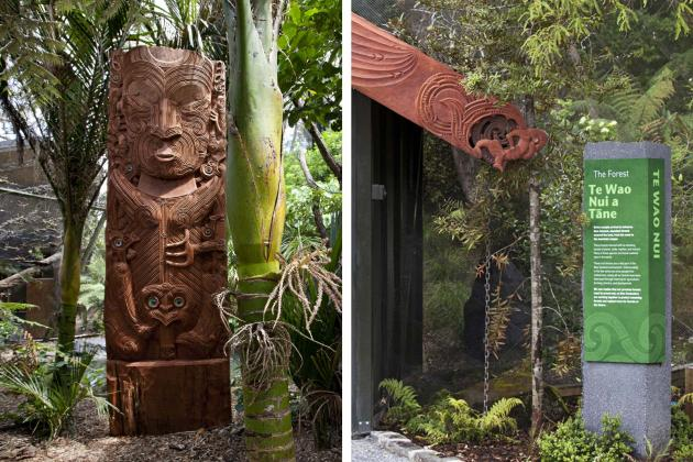 Te Wao Nui - The Living Realm at Auckland Zoo