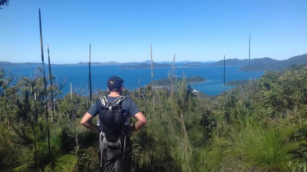 Absolute Airlie   Whitsunday Wayfarer   guided bushwalking tour to Mt Rooper from Airlie Beach
