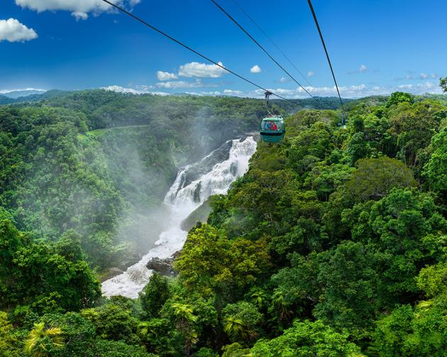 Skyrail Rainforest Cableway Return (including Kuranda)
