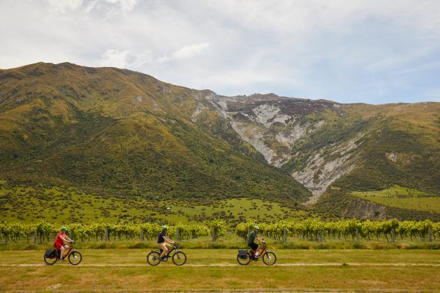 Halfday Guided Ebike Wine Tour