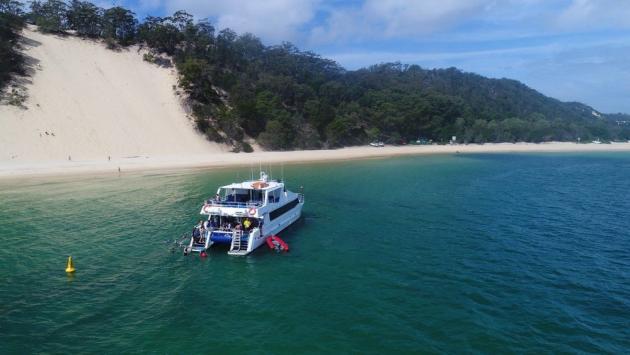 Eco Marine Safari Cruise and Snorkel - Roma Street Transfers