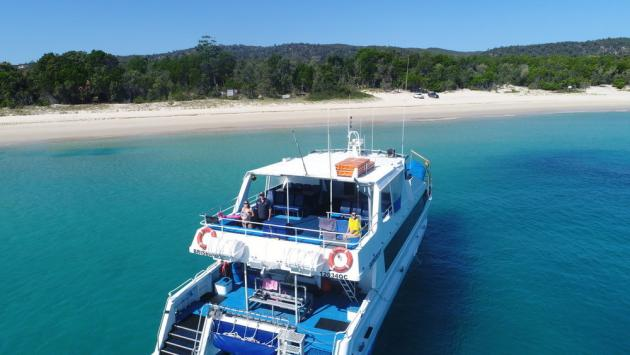 Eco Marine Safari Cruise and Snorkel - Fortitude Valley Transfers