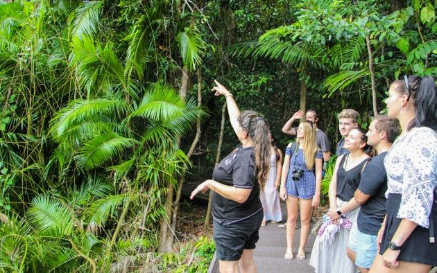 Due to COVID-19 Jungle Tours is experiencing closures tentatively until June 26'Go Wild' Cape Tribulation 2 Day 1 Night